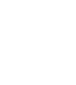 Nevada Bus and Limousine Association